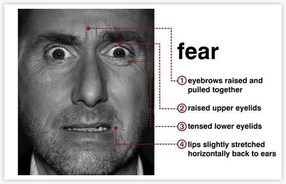 Fear and what it looks like